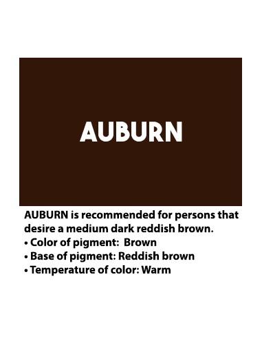 ArteStylo Auburn Eyebrow